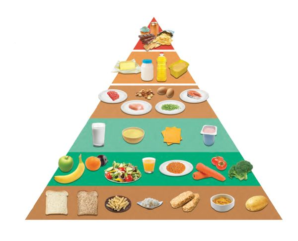 ... Eating Using the Food Pyramid | Crosshaven Boys' National School